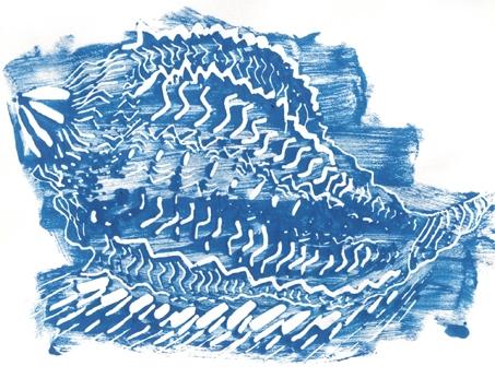 conchiglia tecnica incisione stampa Adigraf Silvia Ricotta