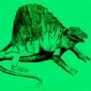 disegno a matita Silvia Ricotta dinosauro